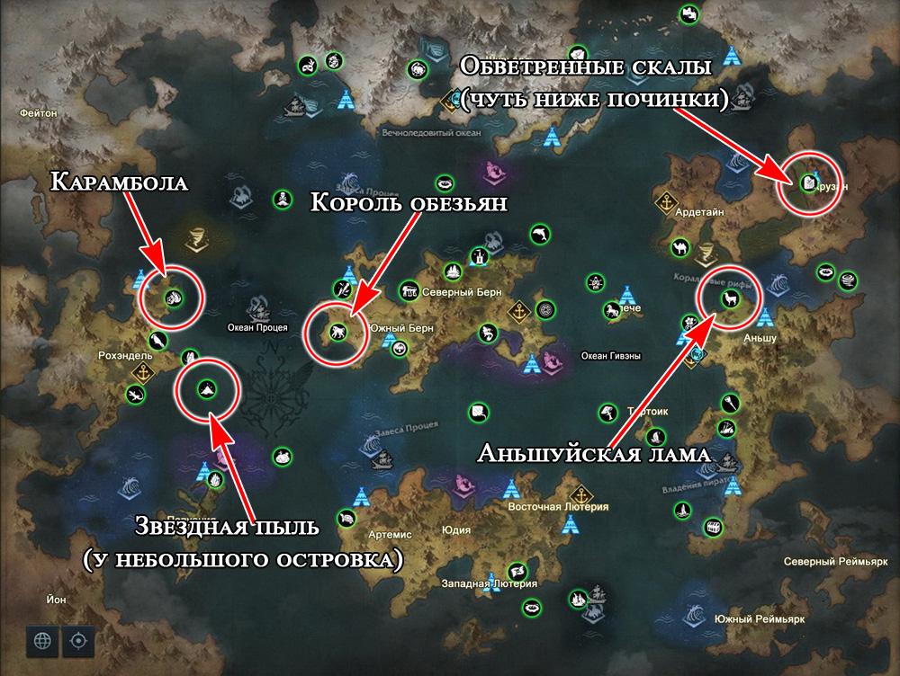 Морские приключения из поместья в Лост Арк 2.0