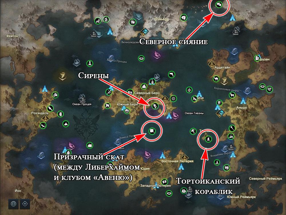 Морские приключения с локальных событий в Лост Арк 2.0