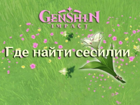 Сесилия в Genshin Impact