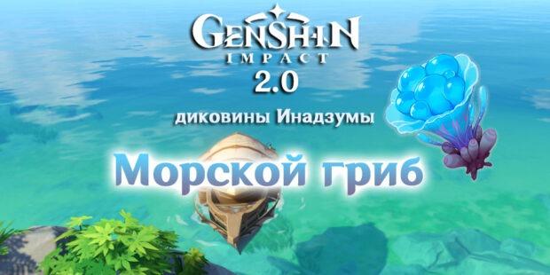 морской гриб в геншин импакт 2.0