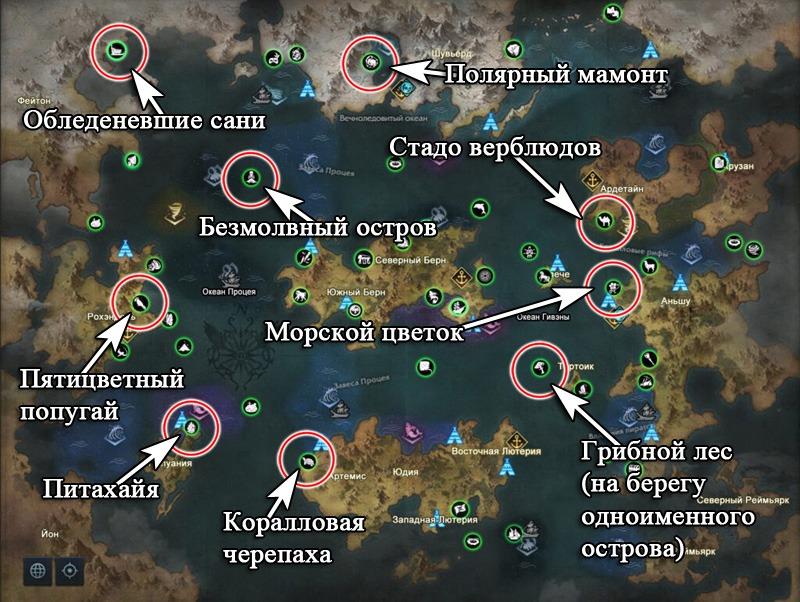 морские приключения за атлас лост арк 2.0