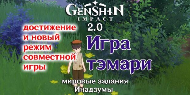 Игра тэмари в Геншин Импакт 2.0